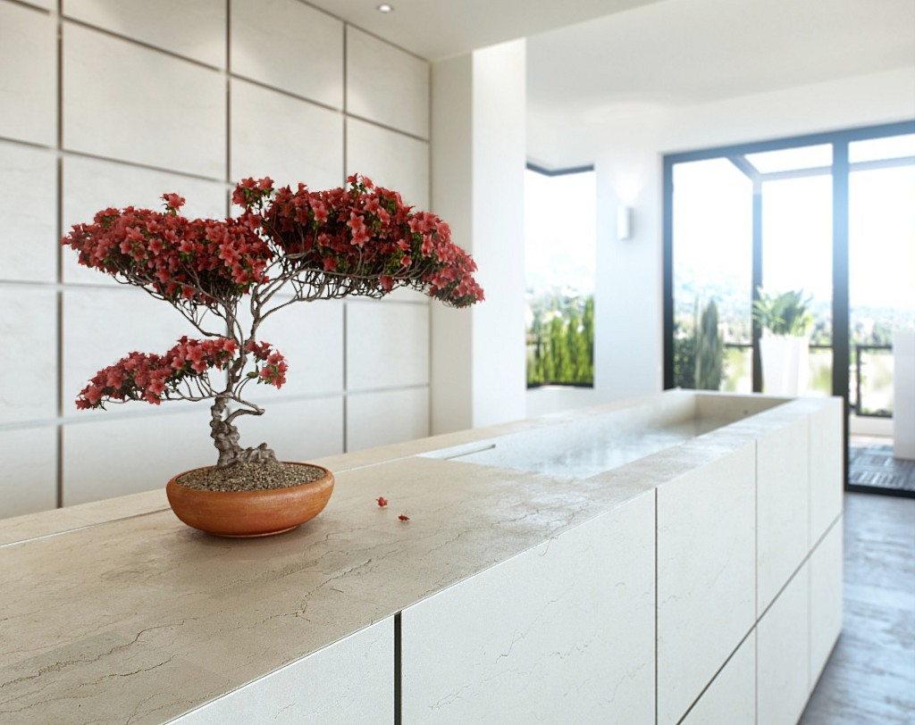 Дерево бонсай в интерьере кухни