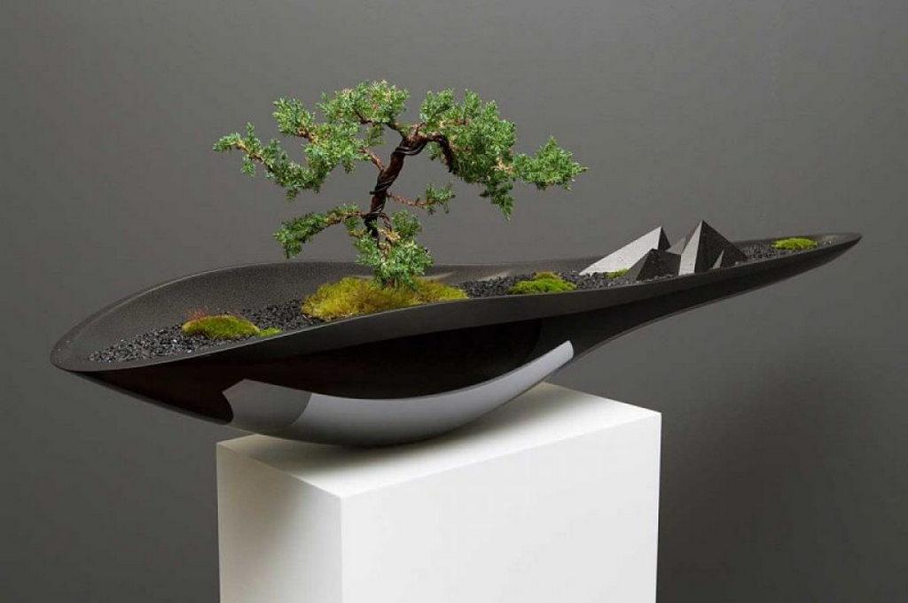Дерево бонсай в вазе