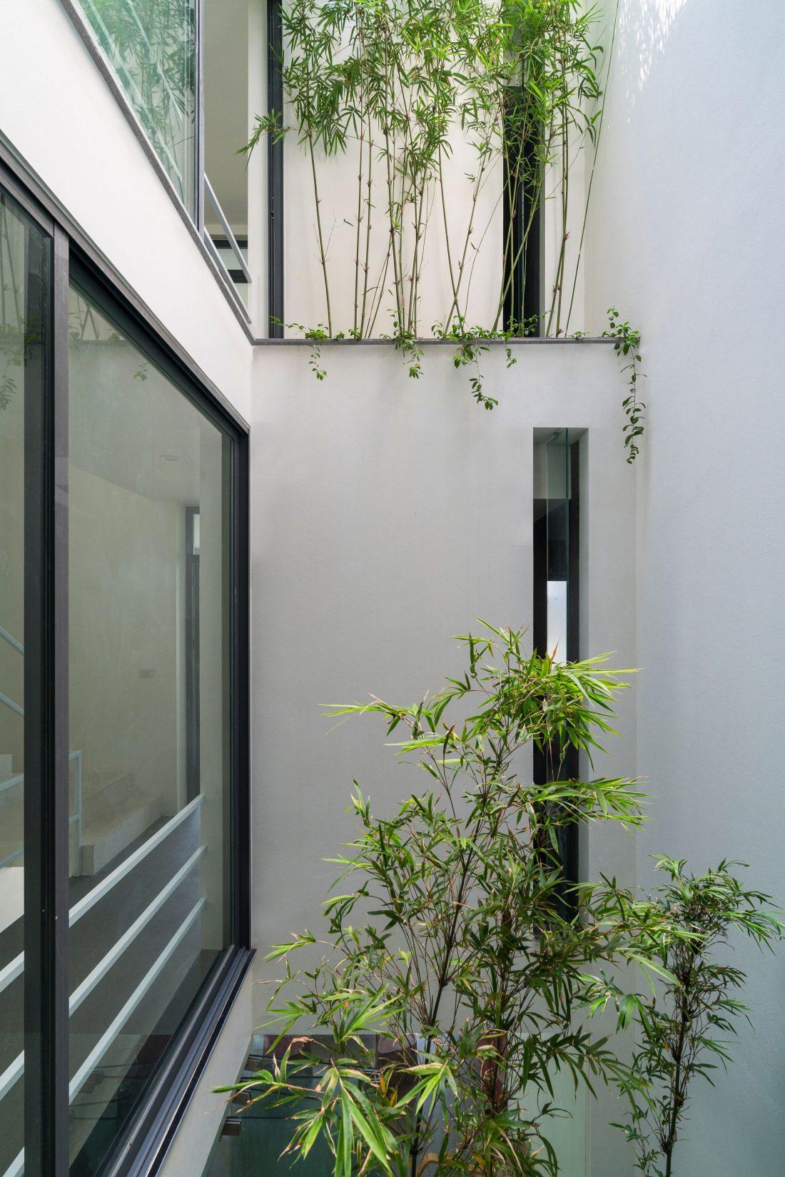 dom-v-derevyah-fotografii-neobychnogo-doma-v-vetname-10
