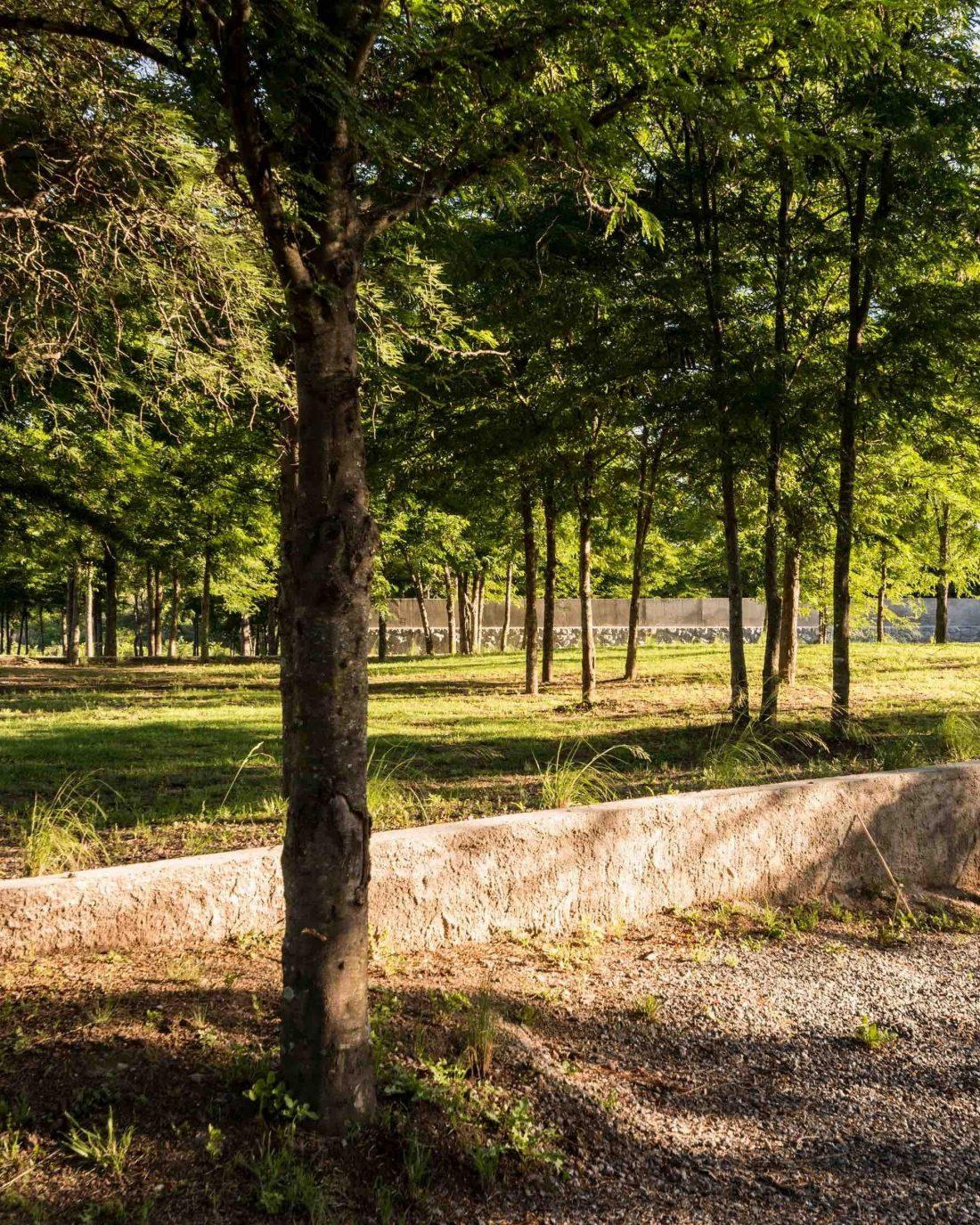 Экологичный и аутентичный проект дома от студии MWS arquitectura 29