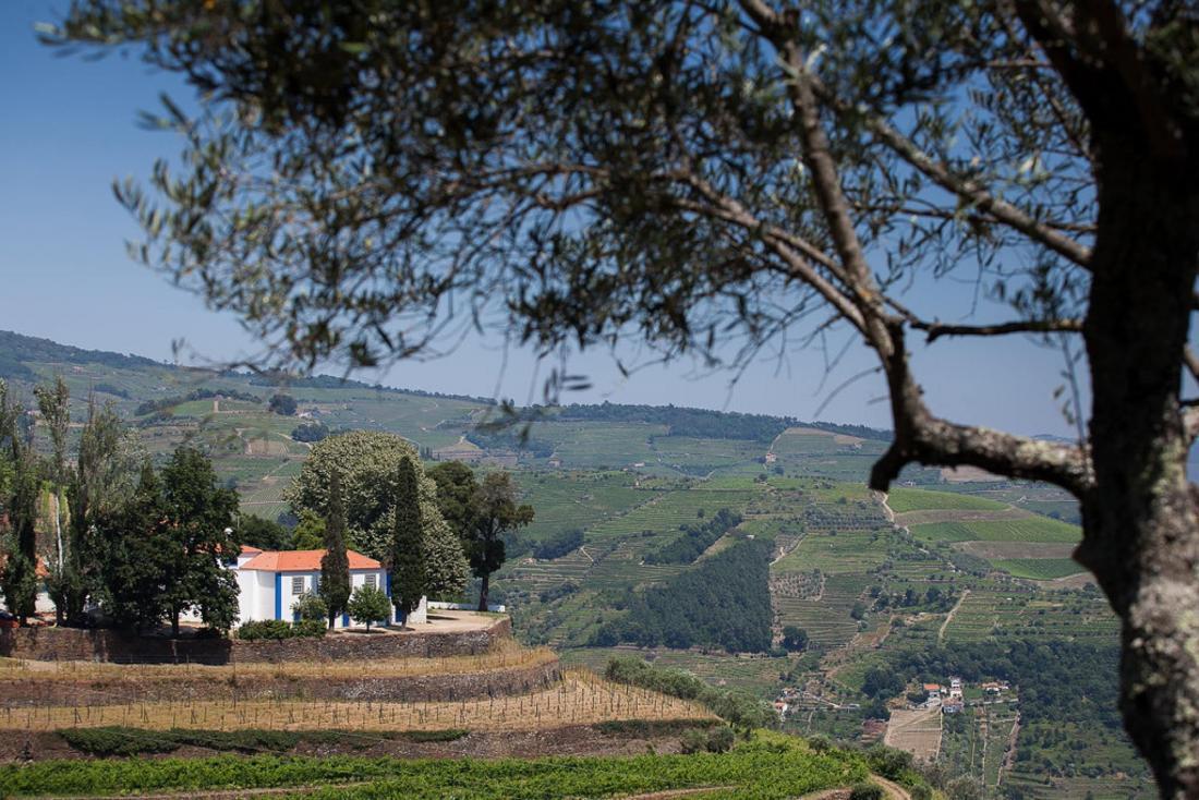 Дом Quinta da Boavista в Португалии – проект студии SAMF Arquitectos 33