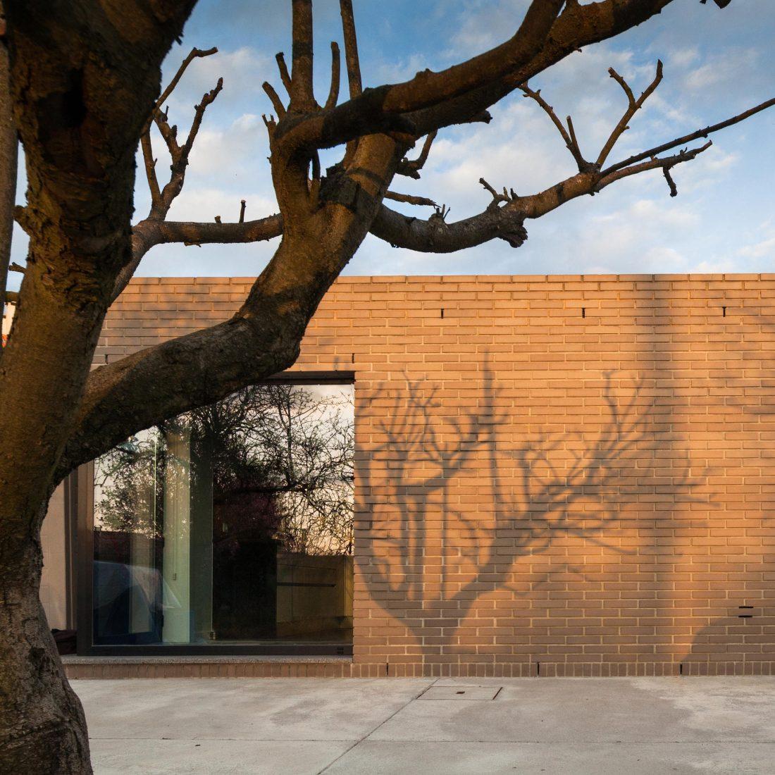 Дом-патио от студии PROD arquitectura design 6
