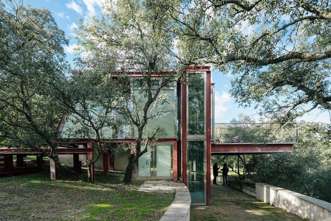 Стеклянный дом в лесу по проекту студии PENELAS ARCHITECTS 2