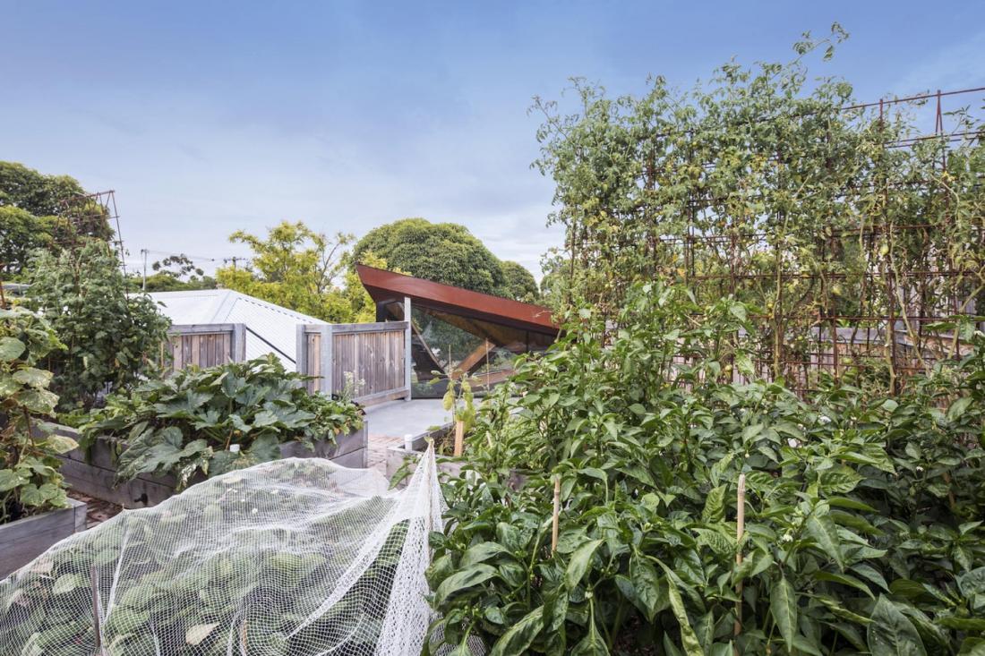 Пшеничный дом от студии Damian Rogers Architecture 10