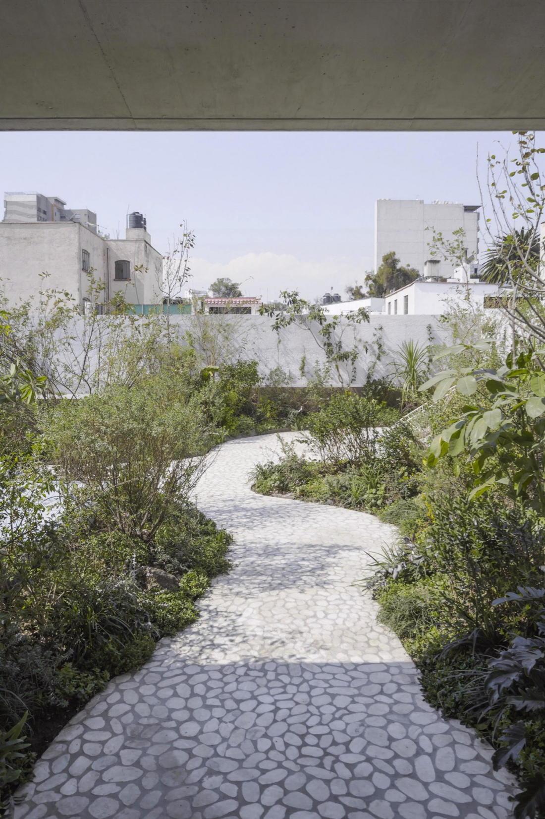 Дом в самом центре Мехико от студии Zeller & Moye 15
