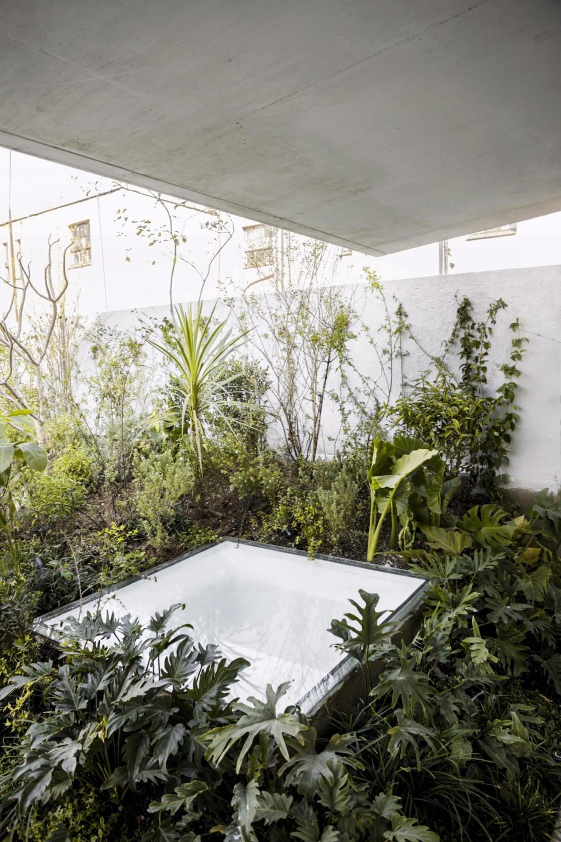 Дом в самом центре Мехико от студии Zeller & Moye 22