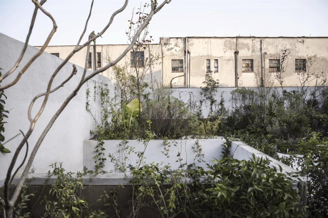 Дом в самом центре Мехико от студии Zeller & Moye 6