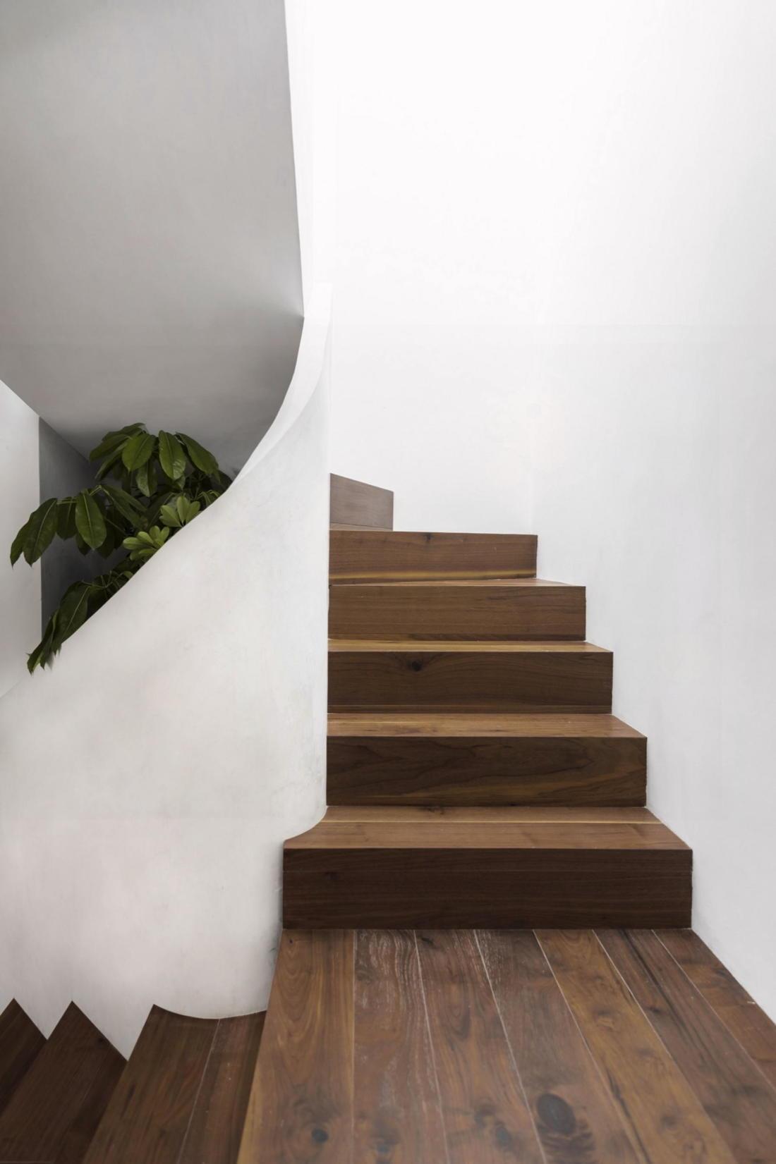 Дом в самом центре Мехико от студии Zeller & Moye 8