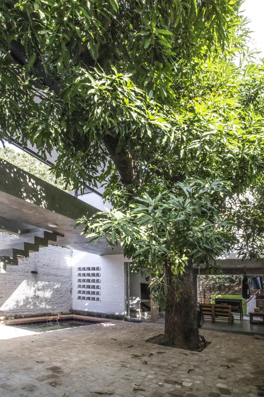 Реконструкция дома от студии Biocons Arquitectos 8